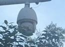 居士林门口的治安摄像头被一叶障目了