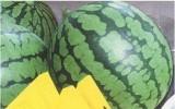 东台美食:西瓜