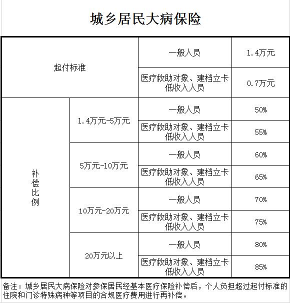 居民医保-大病保险.png