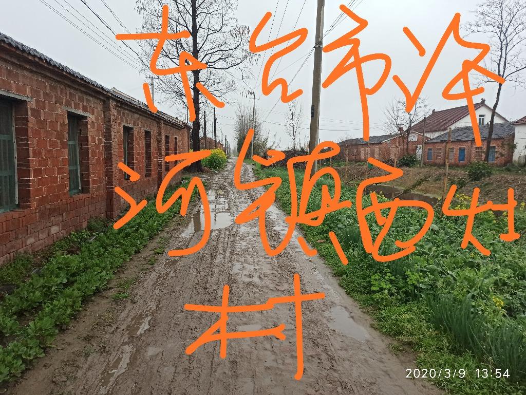 IMG_20200326_184818.jpg